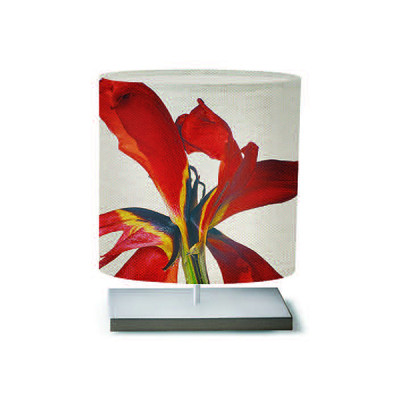 Artempo - Castor and Pollux - Artempo Castor e Pollux Serie Flower TL S Moderne Tischlampe - African Iris  - LS-AT-454