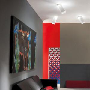 Studio Italia Design - Beetle - Beetle 60 LED AP PL - Modern design wall and ceiling lamp